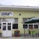 zebra-afara9823